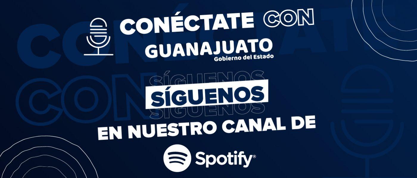 SpotifyVedaDependencias_1440x600